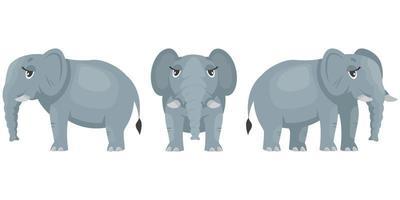 kvinnlig elefant i olika poser. vektor