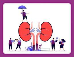 designillustration för njursjukdom och behandling. försäkring för inre organ. enkla njurar för rekvisita. design kan användas för webbplats, webb, målsida, banner, mobilappar, ui ux, affisch, flygblad vektor
