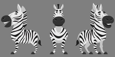Zebra in verschiedenen Posen. vektor