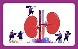 designillustration för njursjukdom och behandling. anatomi av njuren för medicinsk, rekvisita och hälsoutbildning. design kan användas för webbplats, webb, målsida, banner, mobilappar, ui ux, affisch vektor