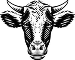 vektorillustration av en ko i graveringsstil på vit bakgrund vektor