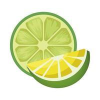 frische Zitronen-Zitrus-Ikone vektor