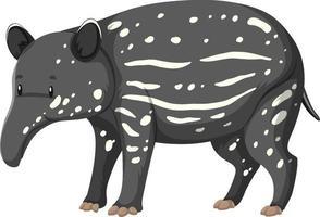 baby tapir vilda djur på vit bakgrund vektor