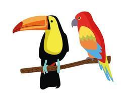 vilda tropiska papegoja och tukan fåglar natur ikon vektor