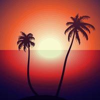 tropischer Sonnenuntergang mit Palmen vektor
