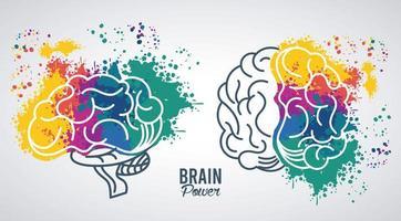 hjärnor kraft mallar med färger stänk vektor