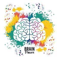 hjärnkraftmall med uppsättning färgfärger stänk vektor