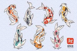 Koi Fisch Vektor Set