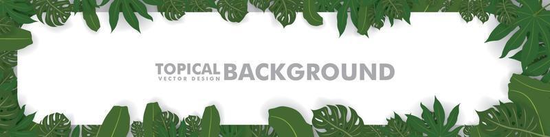 ram gjord av färska gröna tropiska blad på vit bakgrund. utrymme för design eller text. vektor