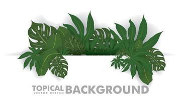 färska gröna tropiska blad på vit bakgrund. utrymme för design eller text. vektor