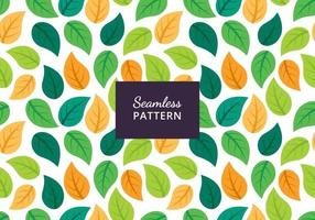 nahtloses Musterdesign des grünen Blattes vektor