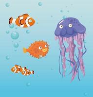 Quallen und Fische im Ozean, Meeresweltbewohner, niedliche Unterwasser-Kreatur vektor