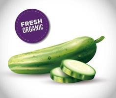 Gurke ganz und in Scheiben geschnitten, gesundes Essen, frisches Gemüse aus biologischem Anbau vektor