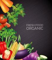 frisches Bio-Gemüse, gesundes Essen, gesunder Lebensstil oder Diät auf schwarzem Hintergrund vektor