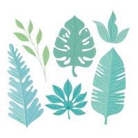 samling av tropiska löv på pastellfärger vektor