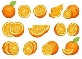 köstliche orange Fruchtvektor-Entwurfssatzillustration lokalisiert auf weißem Hintergrund vektor