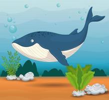 Blauwal im Ozean, Meeresweltbewohner, niedliche Unterwasser-Kreatur vektor