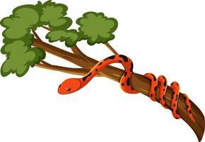Schlange auf einem Zweig lokalisiert auf weißem Hintergrund