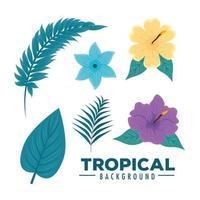 tropisk bakgrund ikonuppsättning vektor