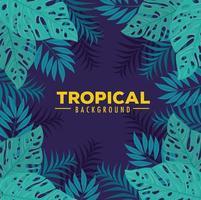 tropischer Laubhintergrund mit grünen Blättern