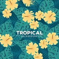 tropisk lövverk bakgrund med gröna blad och blommor vektor
