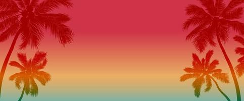 Sommerhintergrundentwurf des Kokosnussbaums mit Kopienraumvektorillustration
