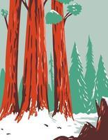 Redwood National- und State Park im Winter mit Küstenmammutbäumen in Nordkalifornien wpa Plakatkunst vektor
