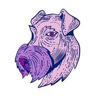 bingley terrier huvud etsning färg vektor