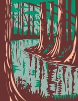 Cedar Creek im Congaree-Nationalpark in Central South Carolina, Vereinigte Staaten von Amerika, WPA-Plakatkunst vektor