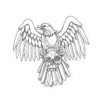 amerikanischer Adler umklammert Schädel Gekritzel vektor