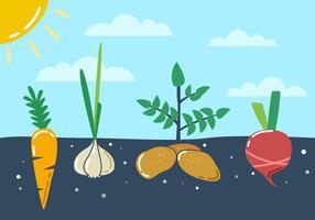 Herausragende Gemüsegarten-Vektoren vektor
