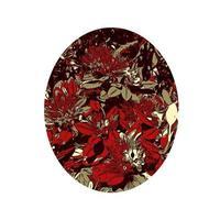 Blume von metrosideros excelsa pohutukawa neuseeland weihnachtsbaum farbe linienkunst oval vektor