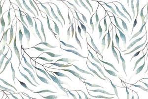 Muster von Eukalyptusblättern mit Aquarell gezeichnet vektor