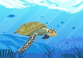 Schildkröten vektor