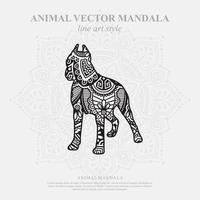 Katzenmandala. Vintage dekorative Elemente. orientalisches Muster, Vektorillustration. vektor