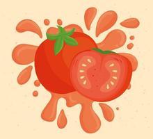 färsk tomatgrönsak med saftigt stänk vektor
