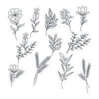 handritad blommasamling. vektor illustration