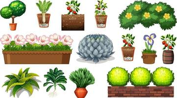 uppsättning av olika växter i krukor isolerad på vit bakgrund vektor