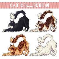 Vektor Haustiere flauschige verspielte Katzen in verschiedenen Farben eingestellt