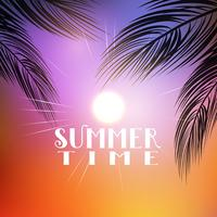 Sommar palmträd bakgrund