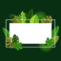 tropischer Rahmenhintergrund mit Monstera-Blättern um Grenze vektor