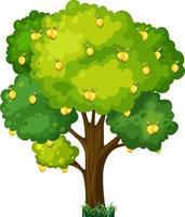 citronträd i tecknad stil isolerad på vit bakgrund vektor