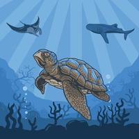 illustrationer under vattnet av sköldpaddor, valar, stingray, korallrev och vatten. premiumvektor