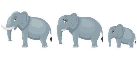 sidosikt för elefantfamiljen. vektor