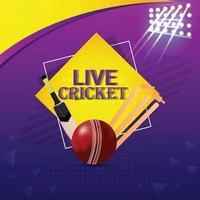 cricket sportutrustning med stadionbelysning vektor