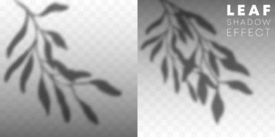 uppsättning bladskugga överläggningseffekt vektor