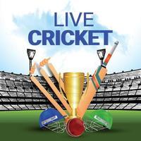 Live-Cricket-Turnier Hintergrund
