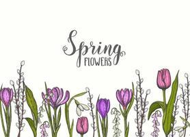 Frühlingshintergrund mit handgezeichneten Blumen-Maiglöckchen, Tulpe, Weide, Schneeglöckchen, Krokus. für Tapeten, Webseitenhintergrund, Oberflächenstrukturen. Vektor Gravur Illustration