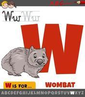 bokstaven w från alfabetet med tecknad wombat djur karaktär vektor