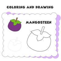 målarbok och ritning bokelement mangostan vektor